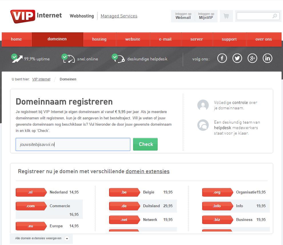 VIP Internet - kies je domein